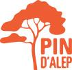Logo Bâtir demain avec le Pin d'Alep